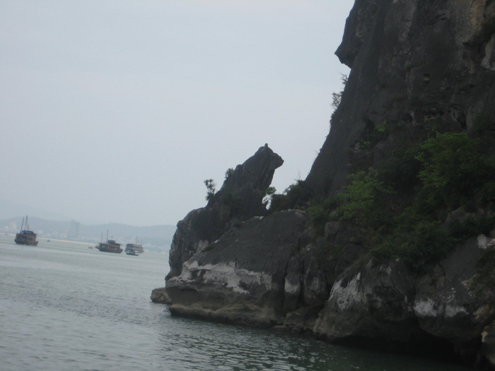Dog rock limestone
