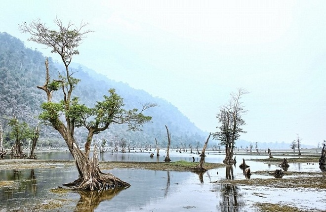 Inside northern jungles, a beautiful lake like no others