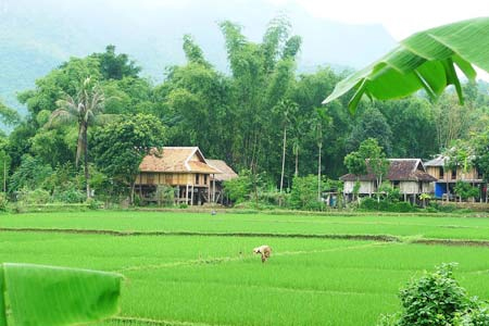Mai Chau valley - Halong - Sapa package tours in 11 days